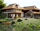 Chủ đầu tư Ngọc Viên Islands bị yêu cầu phá sản